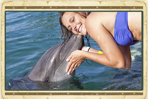 Dolphin Encounter & Dunn's River Falls Combo