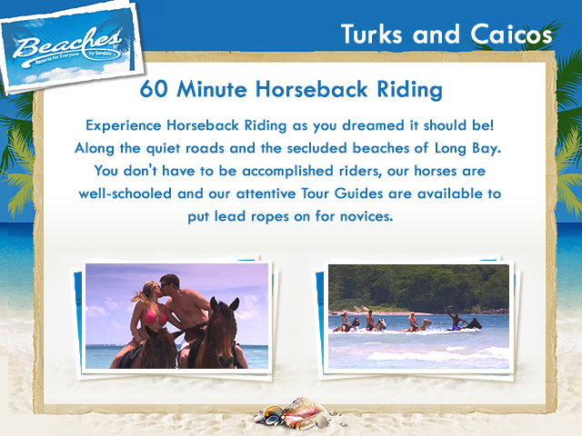 60 Minute Horseback Riding